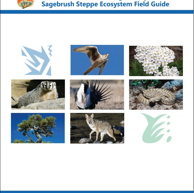 FireWorks Encyclopedia: Sagebrush Steppe Ecosystem Field Guide